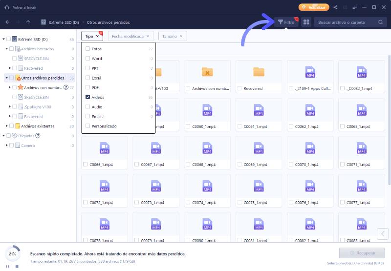Filtrar archivos para recuperar